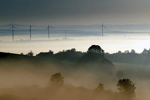 Autumn mood with fog, Dreienberg near Friedewald, Hesse, Germany, Europe