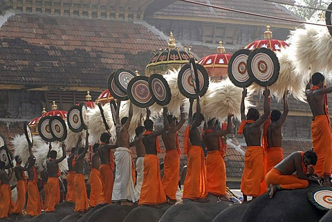 Pujaris standing on the backs of elephants, holding fans made of peacock feathers up in the air, Hindu Pooram festival, Thrissur, Kerala, southern India, Asia - 832-55545
