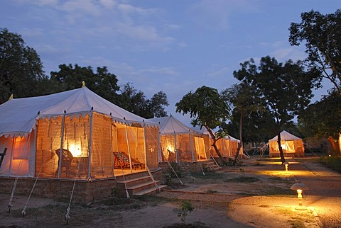 Tents, illuminated from the inside, Royal Jodhpur Camp in Mool Sagar, heritage hotel and pleasure gardens of the Maharajas of Jodhpur near Jaisalmer, Thar Desert, Rajasthan, North India, India, Asia