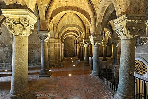 Column capitals in the underground pillared hall of the pagan crypt, 10th century, Cathedral of St. Sepulchre, Basilica Cattedrale di San Sepolcro, Aquapendente, Lazio, Italy, Europe