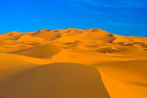 Sand dunes of Erg Chebbi, Sahara, southern Morocco, Africa