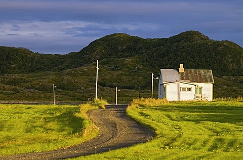 A white farmhouse, a gravel road and green meadows in Sandoya, Nordland, Norway, Europe