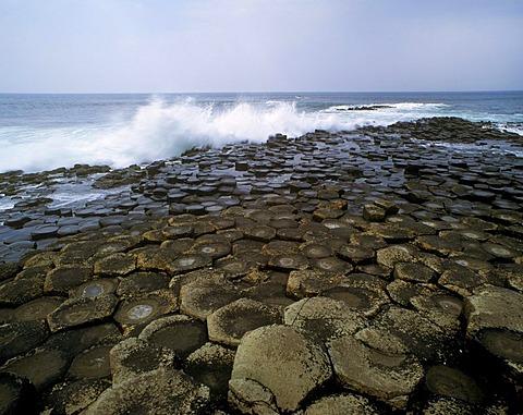 Coast, Giants Causeway, County Antrim, Northern Ireland, United Kingdom, Europe