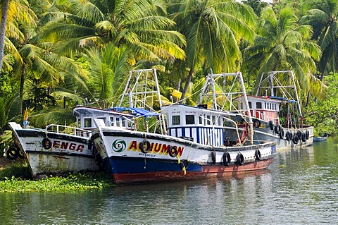 Boats in the backwaters in Kerala, India, Asia