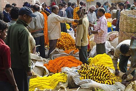 The 125-year Kolkata Flower Market, eastern India's largest flower market, Kolkata, West Bengal, India, Asia