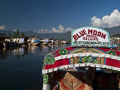 Shikara, traditional boat on Dal Lake, Srinagar, Jammu and Kashmir, India, Asia - 832-61953
