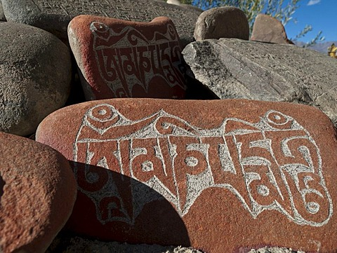 """Mani stones with the carved """"Om Mani Padme Hum"""", the mantra of Avalokiteshvara, the Buddha of Compassion, Thiksey, Jammu and Kashmir, India, Asia"""