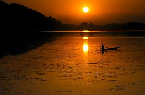 Sunset over Dal Lake, Srinagar, Jammu and Kashmir, India, Asia - 832-62075