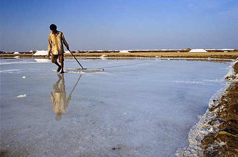 Worker in the saltpans, Malya, Gujarat, India, Asia