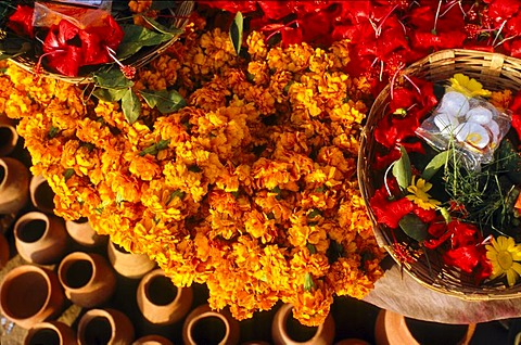 Flowers for religious ceremonies and rituals, Varanasi, Uttar Pradesh, India, Asia