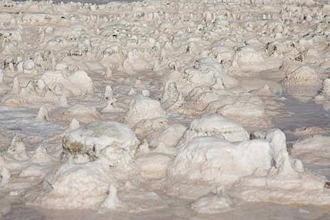 Sebkhet el Melah salt lake near the Zarzis oasis, Tunisia, Maghreb, North Africa, Africa