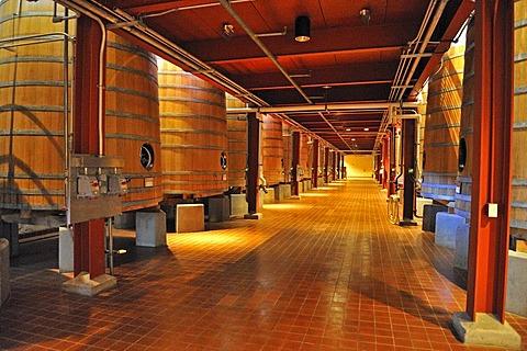 Oak fermentation barrels from the Robert Mondavi Winery, Napa Valley, California, USA