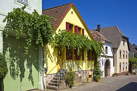 Historical Theresienstrasse, Rhodt unter Rietburg, German Wine Route or Southern Wine Route, Palatinate, Rhineland-Palatinate, Germany, Europe