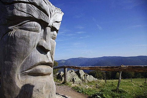 Work of art, carved from an old silver fir tree, 150 years, by artist Thomas Rees on Mt Schauinsland, Black Forest, Baden-Wuerttemberg, Germany, Europe, PublicGround