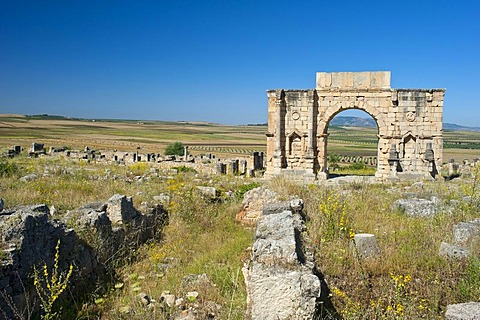 Triumphal arch of Caracalla, Roman ruins, ancient city of Volubilis, UNESCO World Heritage Site, Morocco, North Africa, Africa