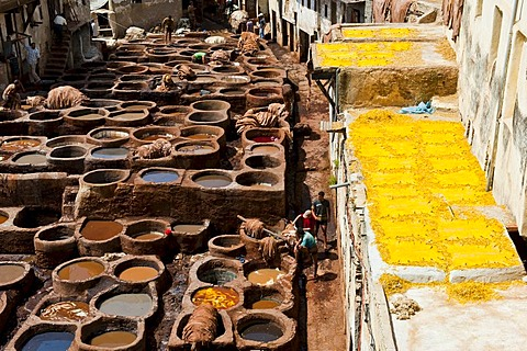 Traditional tannery with dyeing pits, dyed leather spread out on the surrounding rooftops to dry, historic town centre or Medina, UNESCO World Heritage Site, Fez, Morocco, Africa