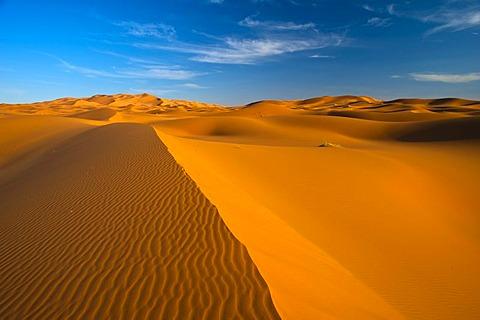 Sand dunes, Erg Chebbi, South Morocco, Morocco, Africa