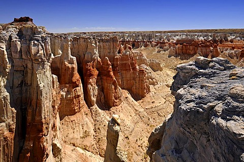 Eroded hoodoos and rock formations in the Coal Mine Canyon, coloured by minerals, Coal Mine Mesa, Painted Desert, Hopi Reservation, Navajo Nation Reservation, Arizona, USA