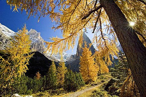 Hiking path in the Fischleintal with Zwoelferkogel, Sextenan Dolomites, South Tyrol, Italy
