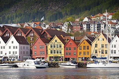 Tyskebryggen or Bryggen, Hanseatic Quarter, Bergen, Hordaland, Norway, Scandinavia, Northern Europe, PublicGround