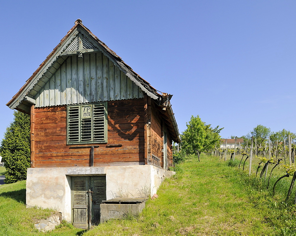 Wine grower's house on Csaterberg mountain, Kohfidisch, Burgenland, Austria, Europe