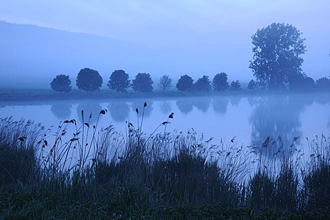 Blue hour, dawn at a fish pond in Thuringia, Germany, Europe