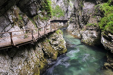 Track in the Vintgar Gorge near Bled, Triglav National Park, Slovenia, Europe