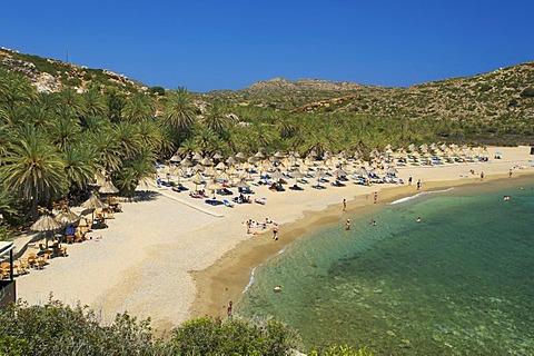 Palm beach Vai, Crete, Greece, Europe