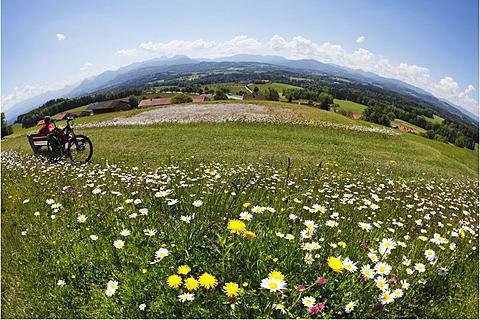 Lookout point, Irschenberg, Oberland, Upper Bavaria, Bavaria, Germany, Europe, PublicGround