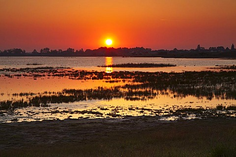 Sunrise at the Zicklacke lake in Ilmitz, Nationalpark Neusiedlersee national park, Burgenland region, Austria, Europe