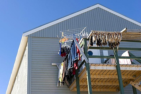 Dried fish and laundry on a balcony, Tasiilaq or Ammassalik, East Greenland, Greenland