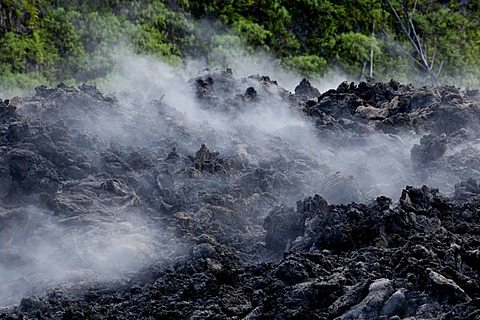 Still warm lava from an eruption of the volcano Piton de la Fournaise in 2007 steaming after rain, at Piton Sainte-Rose, Reunion island, Indian Ocean