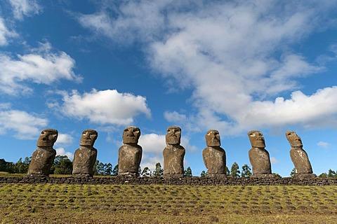 Moai statues, Ahu Akivi, Rapa Nui or Easter Island, Chile, South America