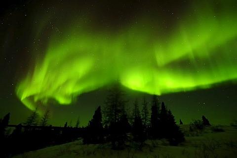 Northern Lights, aurora borealis above the Arctic, Hudson Bay, Manitoba, Canada
