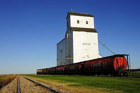 Granary, grain elevator, Manitoba, Canada