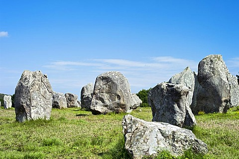 Carnac stones in Carnac, Brittany, France, Europe