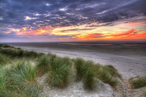 Sunset on the beach at De Cocksdorp on Texel, North Holland, Netherlands, Europe
