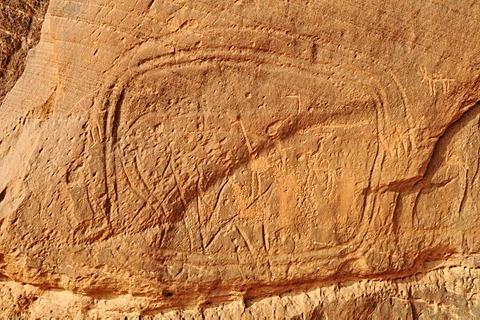 Elephant engraving, neolithic rock art of the Tadrart, Tassili n'Ajjer National Park, Unesco World Heritage Site, Algeria, Sahara, North Africa