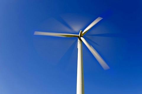 Spinning wind turbine