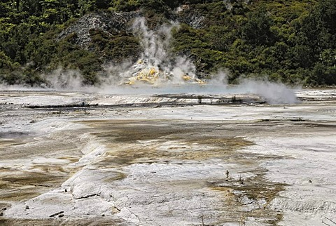 Artists Palette, Orakei Korako Cave and Thermal Park, Hidden Valley, Taupo, Rotorua, North Island, New Zealand