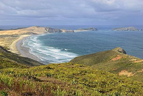Te Werahi Beach to Cape Maria van Diemen, near Cape Reinga, North Island, New Zealand