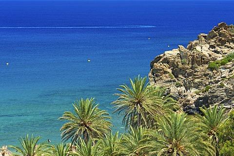 Palm beach of Vai, Crete, Greece, Europe