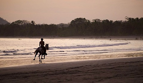 Horse and rider on Samara Beach, Samara, Guanacaste, Costa Rica, Central America