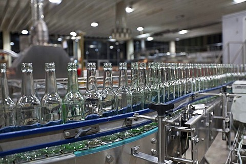 Empty beer bottles after cleaning, on a conveyor belt, Binding brewery, Frankfurt, Hesse, Germany, Europe