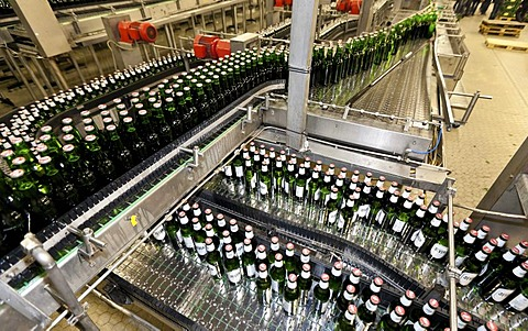 Beer bottles being filled on a conveyor belt, Binding brewery, Frankfurt, Hesse, Germany, Europe