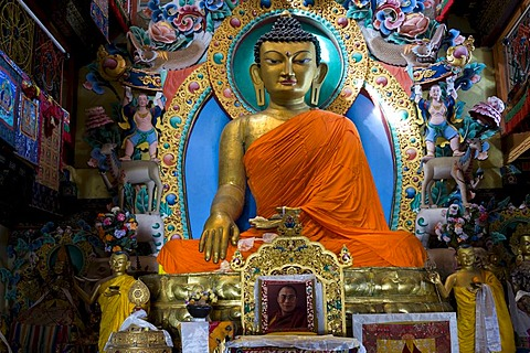 Eight metre tall Sakyamuni Buddha statue in the Galden Namgyal Lhatse monastery, the largest Buddhist monastery in India, Tawang, Arunachal Pradesh, India, Himalayas, Asia