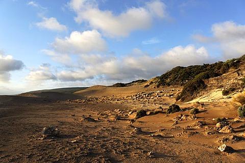 Skippy Rock coastline, Augusta, Western Australia, Australia