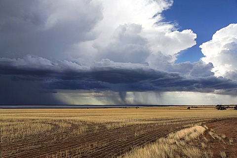 Storm over farmland and Yarra Yarra Lake, Carnamah, Western Australia, Australia