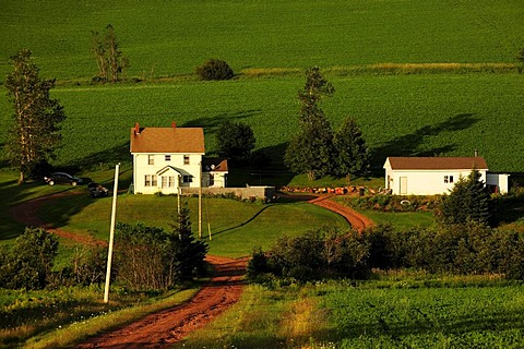 Farm outside of Cavendish, Prince Edward Island, Canada, North America