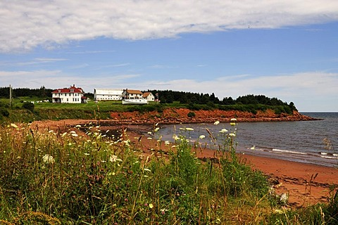 Red sandstone beach and cliffs in the Prince Edward Island National Park, Prince Edward Island, Canada, North America